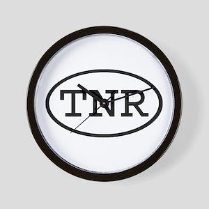 TNR Oval Wall Clock