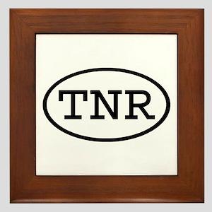 TNR Oval Framed Tile