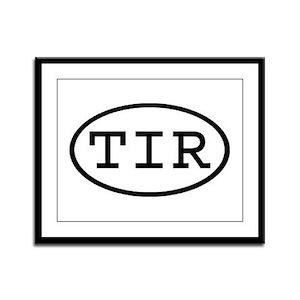 TIR Oval Framed Panel Print