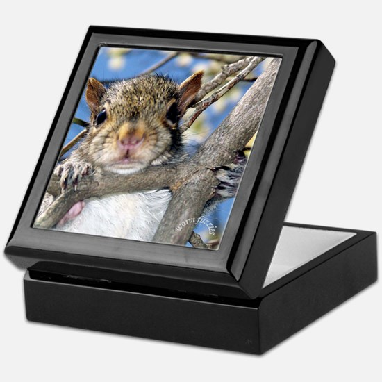 Squirrel Baby Face Keepsake Box