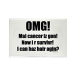 I Can Haz Hair? Rectangle Magnet (10 pack)