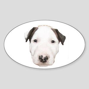 Miniature Bull Terrier Puppy Oval Sticker