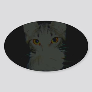 Kat Scratch Oval Sticker