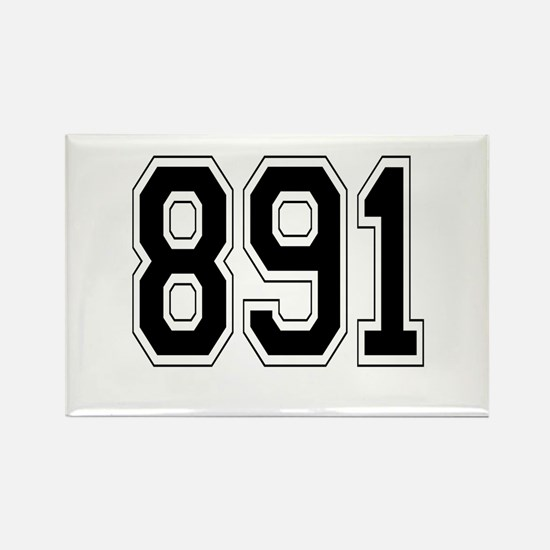 891 Rectangle Magnet