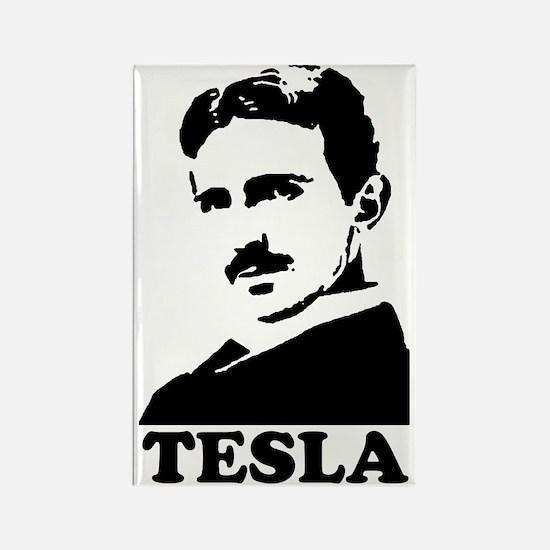 Tesla Rectangle Magnet