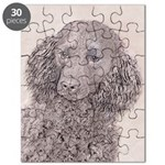 American Water Spaniel Puzzle
