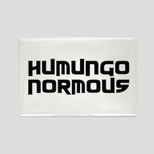 Humungo Normous BIG Rectangle Magnet