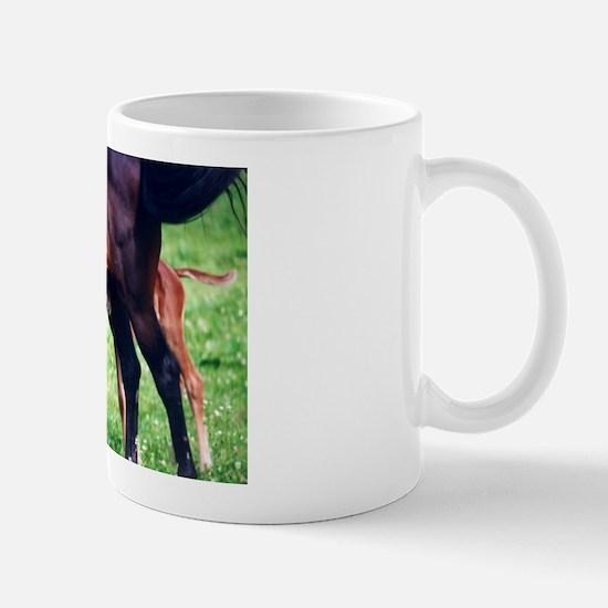Where's the Milk Mug