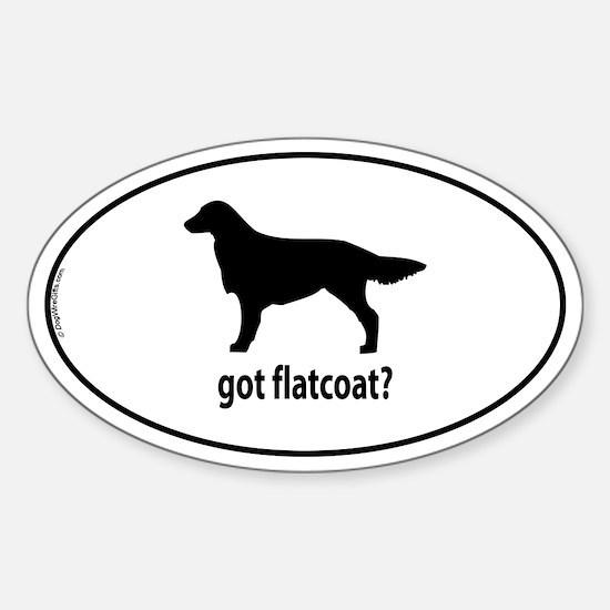 Got Flatcoat? Oval Decal