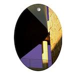 Form v. Color Oval Ornament