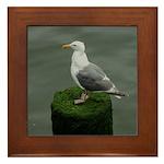 Bird on a Pole Framed Tile