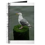 Bird on a Pole Journal