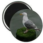 Bird on a Pole Magnet