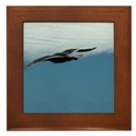 Flying Bird Framed Tile