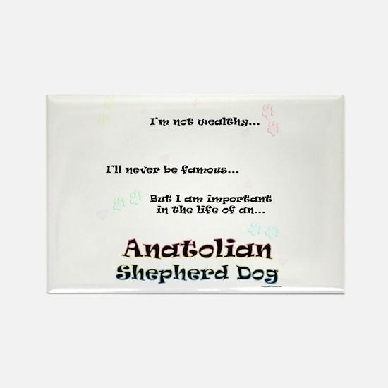 ASD Life Rectangle Magnet (100 pack)