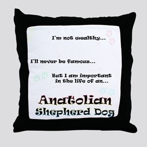 ASD Life Throw Pillow