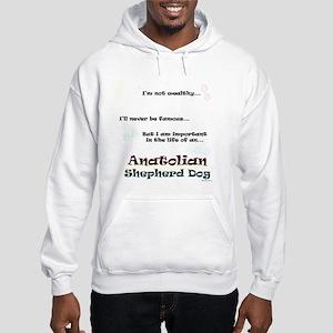 ASD Life Hooded Sweatshirt