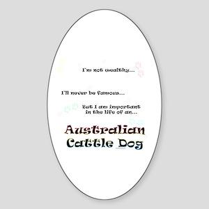 ACD Life Oval Sticker