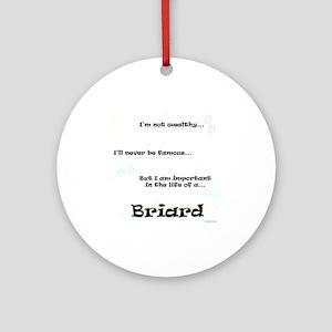 Briard Life Ornament (Round)