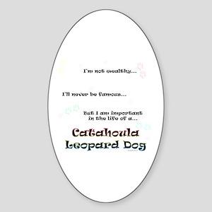 Catahoula Life Oval Sticker