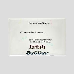 Irish Setter Life Rectangle Magnet