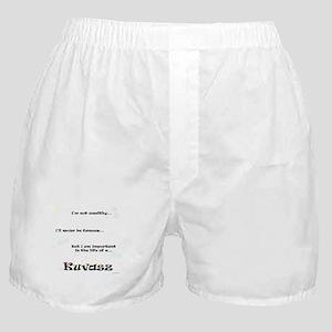 Kuvasz Life Boxer Shorts
