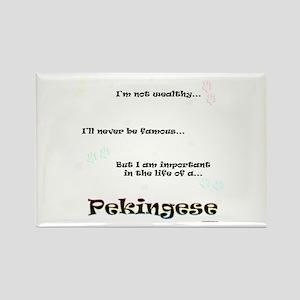 Pekingese Life Rectangle Magnet