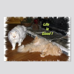 Life is Good - Persian Cats Postcards (Package of