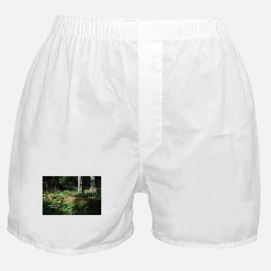 Deep in the Forest Boxer Shorts