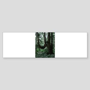 The Tree Bumper Sticker