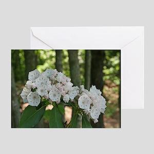 Springtime Mountain Laurel Greeting Card