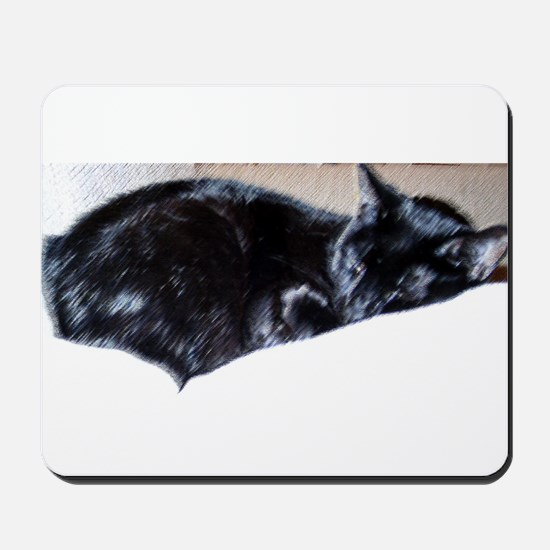 Midnight Sleeping Mousepad