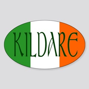 County Kildare Oval Sticker