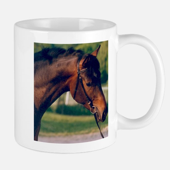Swedish Intrigue Mug