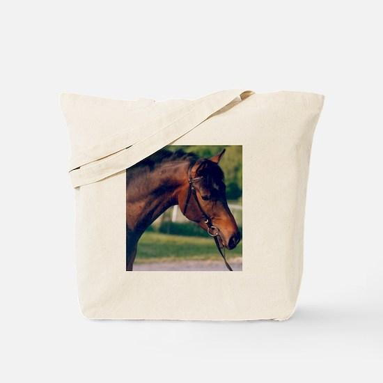 Swedish Intrigue Tote Bag