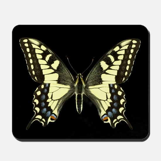 The Oregon Swallowtail Butterfly Mousepad