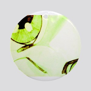 Green Beige Cat Ornament (Round)