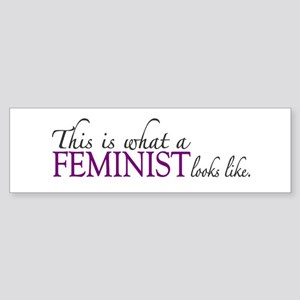 What a Feminist Looks Like Bumper Sticker