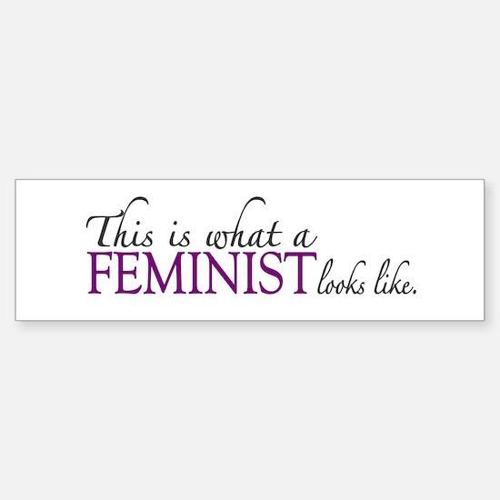 What a Feminist Looks Like Bumper Bumper Bumper Sticker