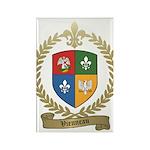 VIENNEAU Family Crest Rectangle Magnet (100 pack)