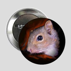 """Wildlife Rehab 2.25"""" Button"""