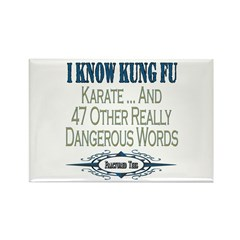 Kung Fu Rectangle Magnet (10 pack)