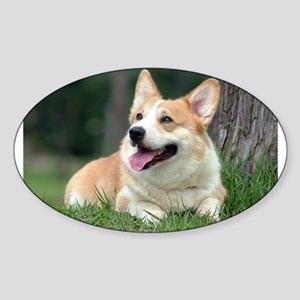 Corgi Oval Sticker