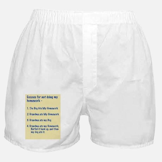 homework excuses #3 Boxer Shorts