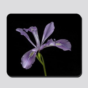 Purple Wild Iris Flower Mousepad