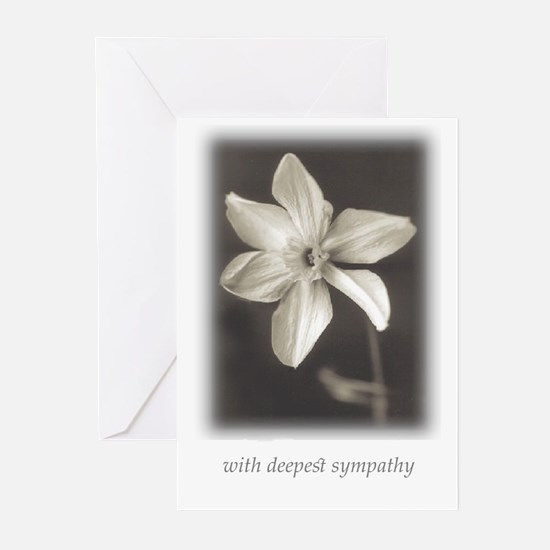 narcissus-w deepest sympathy Greeting Cards