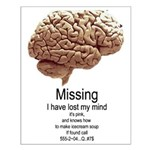 I Have Lost My Mind Small Poster