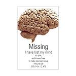 I Have Lost My Mind Mini Poster Print