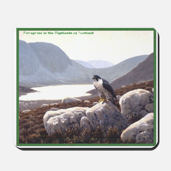 Peregrine in the Higlands Mousepad