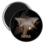 NFSA 2.25
